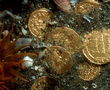 Golden coins dating from the Byzantine (7th century AD) and Islamic (8th Century AD) periods, found at Canopus.