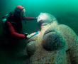 Colossal red granite statue of a Ptolemaic queen, 4.9 m high and weighing 4 tons, found close to the great temple of sunken Heracleion.
